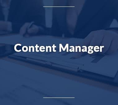 Copywriter Content Manager