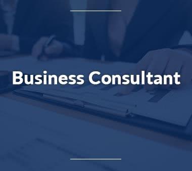 Junior Consultant Business Consultant
