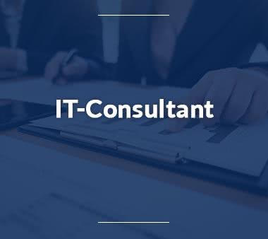 Junior Consultant IT Consultant