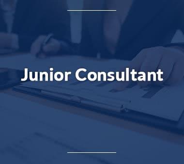 Junior-Consultant