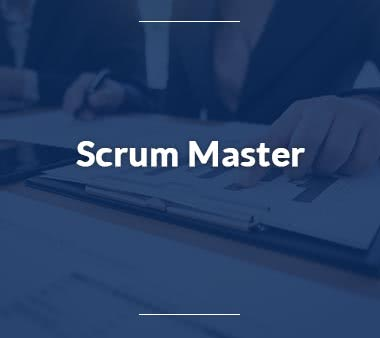 Scrum Master Jobs