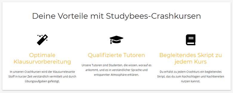 Studybees Crashkurse Vorteile