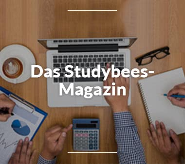 Studybees Magazin