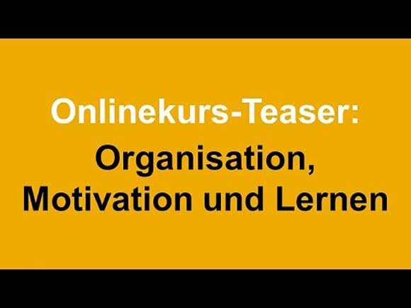 Studybees Online Kurs Organisation